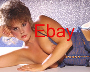 http://thumbs2.imagebam.com/01/81/f6/a4eef71055821554.jpg