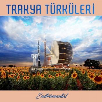Çeşitli Sanatçılar - Trakya Türküleri Enstrümantal (2019) Full Albüm İndir