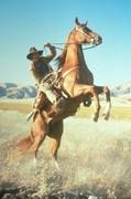 Приключения Бриско Каунти-младшего / The Adventures of Brisco County Jr (сериал 1993 – 1994) C24c83969730254