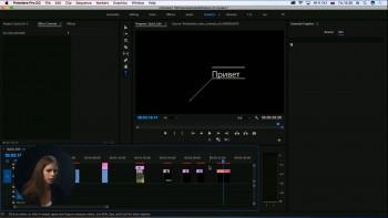 Быстрый монтаж в Adobe Premiere (2017) Видеокурс