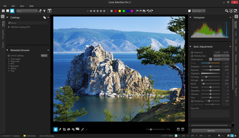 Corel AfterShot Pro 3.5.0.350 x64 (MULTI/ENG)