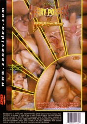 Cherry Poppers 13: Anal Pajama Party (1996)