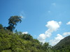 Hiking 2012 June 16 - 頁 4 805239875675854