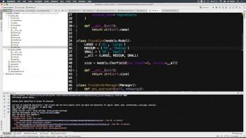 Учимся программировать на Python за 3 месяца (2017) Видеокурс