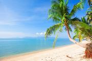 Тропический остров и пляж / Beautiful tropical island and beach 7b68251190117564