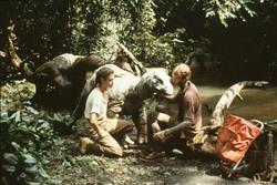 Динозавр: Тайна затерянного мира / Baby: Secret of the Lost Legend/ (1985) Шон Янг 742ab6859592984