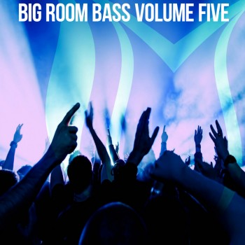 Big Room Bass Vol. 5 (2018) Full Albüm İndir