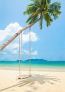 Тропический остров и пляж / Beautiful tropical island and beach 88db821190119554