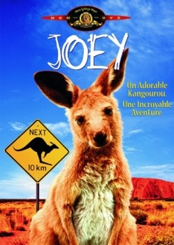 Joey (1997) DVD5 COPIA 1:1 ITA MULTI