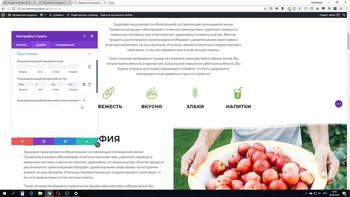 Мини-тренинг по созданию сайтов в muse и wordpress (2018) Видеокурс