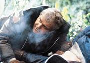 Рэмбо: Первая кровь / First Blood (Сильвестр Сталлоне, 1982) 82e913824053123