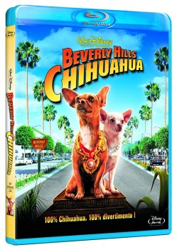 Beverly Hills Chihuahua (2008) BD-Untouched 1080p AVC PCM ENG DTS iTA AC3 iTA-ENG