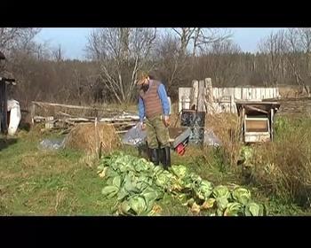 Строителю родового поместья и земледельцу (Видеокурс)