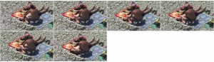 ec899c968104154 - Beach Hunters - Young And Teens Nudism 06