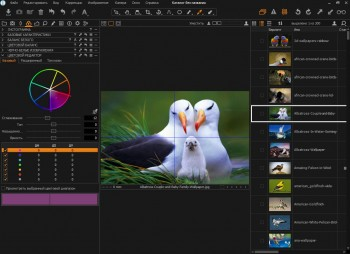 Phase One Capture One Pro 10.2.1.22 x64 (MULTi/RUS/ENG)