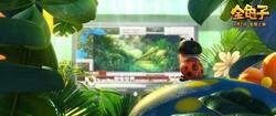 金龟子影片截图