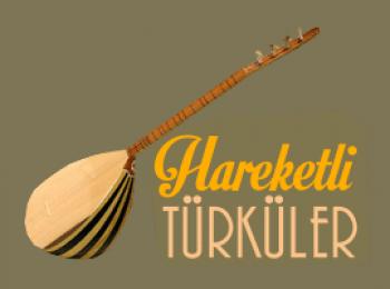 Çeşitli Sanatçılar - Sevilen Hareketli Türküler (2018) Özel Albüm İndir