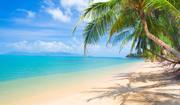 Тропический остров и пляж / Beautiful tropical island and beach 2714011190116244