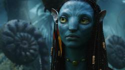 Аватар / Avatar (Сэм Уортингтон, Зои Салдана, Сигурни Уивер, 2009) D250911091452534
