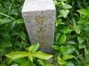 Hiking Tin Shui Wai - 頁 14 1b795b909171154