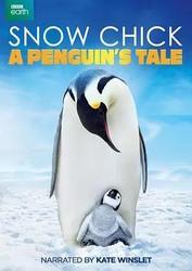 帝企鹅宝宝的生命轮回之旅 Snow Chick - A Penguin's Tale_海报