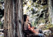 Рэмбо: Первая кровь / First Blood (Сильвестр Сталлоне, 1982) Ebea24824053003