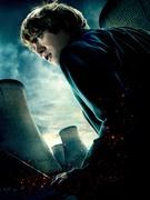 Гарри Поттер и Дары Смерти: Часть первая / Harry Potter and the Deathly Hallows: Part 1 (Уотсон, Гринт, Рэдклифф, 2010) B96b101227121744