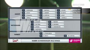 DEL 2018-10-14 Schwenninger Wild Wings vs. Bremerhaven Pinguins - German Cf94031001363954