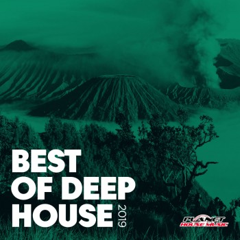 Best of Deep House (2019) Full Albüm İndir