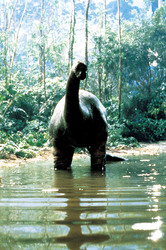 Динозавр: Тайна затерянного мира / Baby: Secret of the Lost Legend/ (1985) Шон Янг C8545c859590944