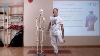 Как обучить негибкого и неспортивного человека йоге (2016) Конференция