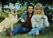 Лучшие друзья | Best Friends ( Берт Рейнолдс, Голди Хоун, 1982) Ab6c6b1065936334