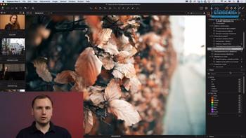 Capture One Pro 11. Профессиональная работа (2018) Мастер-класс