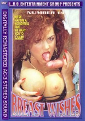 Breast Wishes 14 (1993)