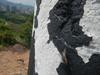 Hiking Tin Shui Wai - 頁 14 33e3f5924908254