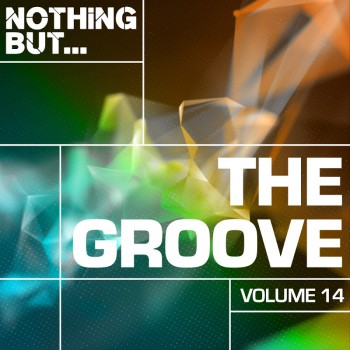 Nothing But... The Groove Vol. 14 (2019) Full Albüm İndir