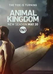 野兽家族 第二季 Animal Kingdom Season 2_海报