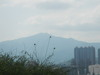 Hiking Tin Shui Wai - 頁 14 D22649924901984