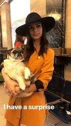 Emily Ratajkowski Marries Boyfriend of 3 weeks Sebastian Bear-McClard at courthouse in NY