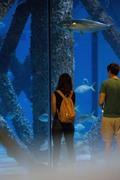 Megan Fox - At The Audubon Aquarium of the Americas in Louisiana 5/9/18