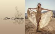 Nicole Scherzinger : Hot Wallpapers x 5