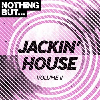 Nothing But... Jackin House Vol. 11 (2019) Full Albüm İndir