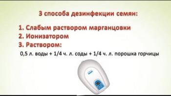Проростки - эликсир жизни! (2017) Видеокурс