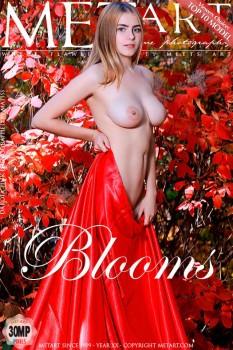Dakota Pink - Blooms   08/05/19