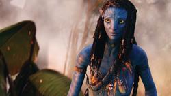 Аватар / Avatar (Сэм Уортингтон, Зои Салдана, Сигурни Уивер, 2009) Ae90ec1091452024