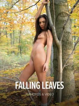 Sabrisse A. Sabrisse – Falling Leaves