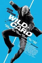 怒火保镖 Wild Card