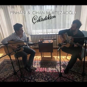 Pinhani feat. Cihan Mürtezaoğlu - Çekirdekten (2019) (320 Kbps + Flac) Maxi Single Albüm İndir