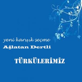 Yerli Karışık Seçme Ağlatan Dertli Türkülerimiz (2018) Özel Albüm İndir