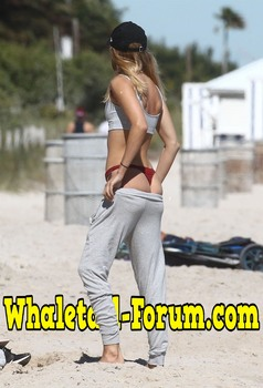 Whale Tail Forum
